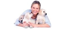 Ветеринар приедет на дом для лечения ваших домашних животных